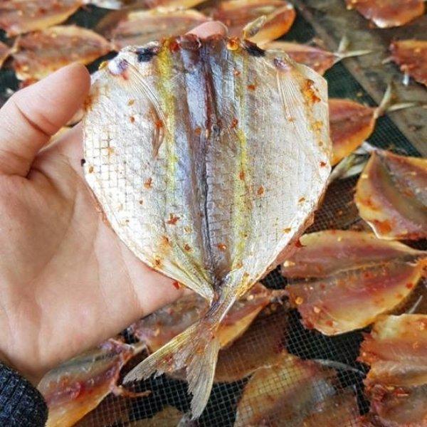 Cá Chỉ Vàng 1 Nắng/ 1kg