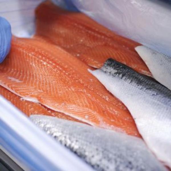 Cá Hồi Phi Lê Tươi Nguyên Miếng/ Miếng 2kg