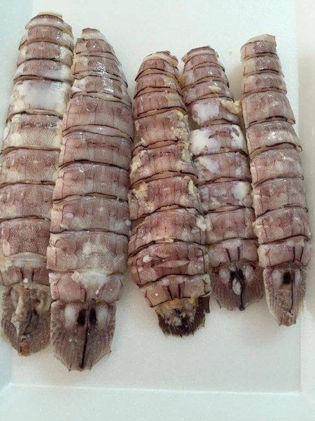 Thịt Tôm Tít (Size Lớn)