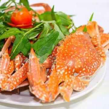 HẢI SẢN KIỀU HƯNG: Mua hải sản tươi sống online – Giao hàng tận nơi tại TPHCM